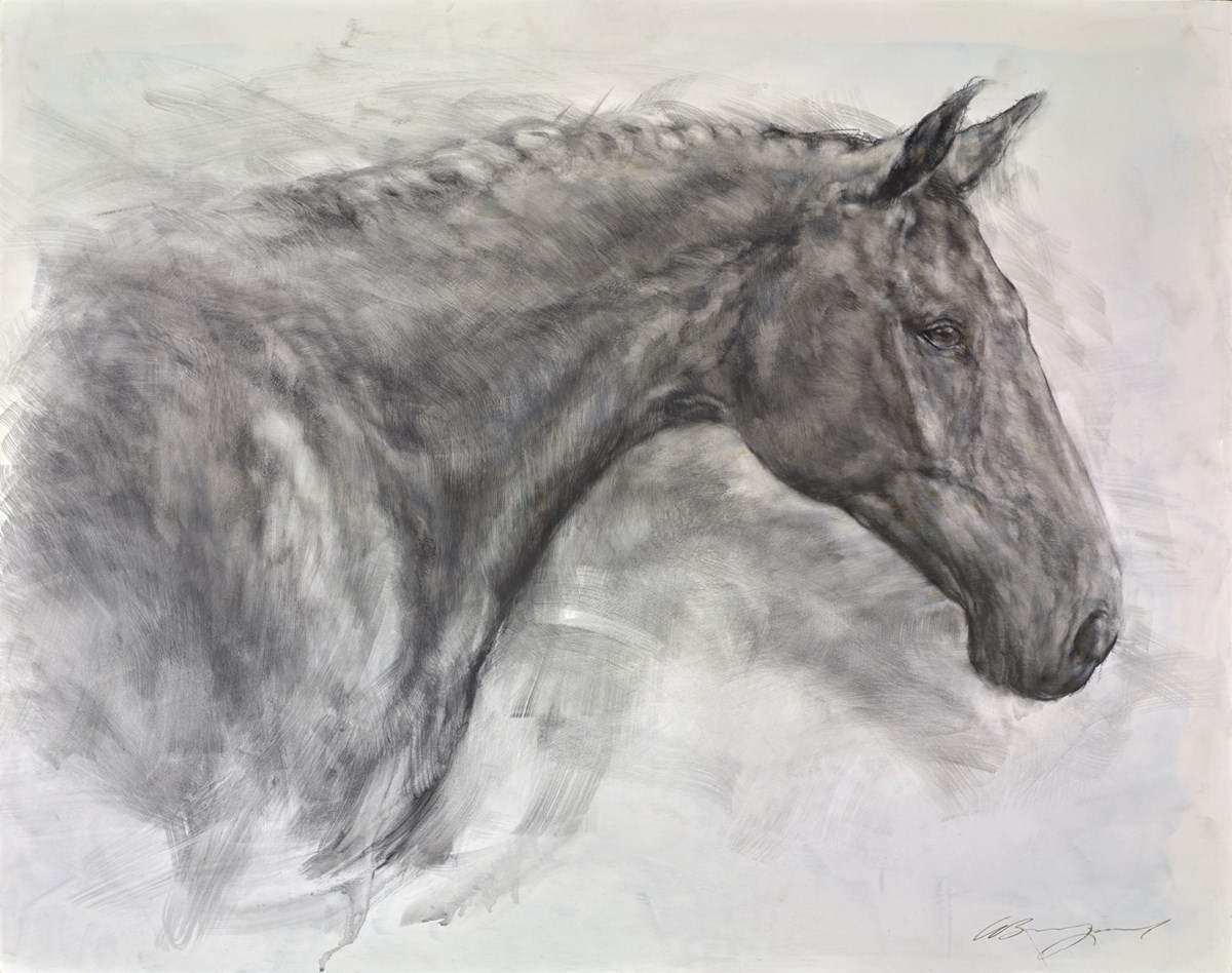 Regal II by gary benfield -  sized 32x25 inches. Available from Whitewall Galleries